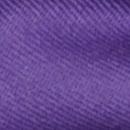 Bow tie purple
