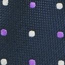 Necktie Preston Points blue