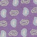 Necktie Rotate Paisley